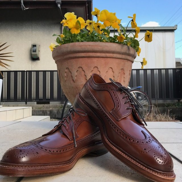 ALDEN X LAKOTA HOUSE Ravello Long Wing Blucher